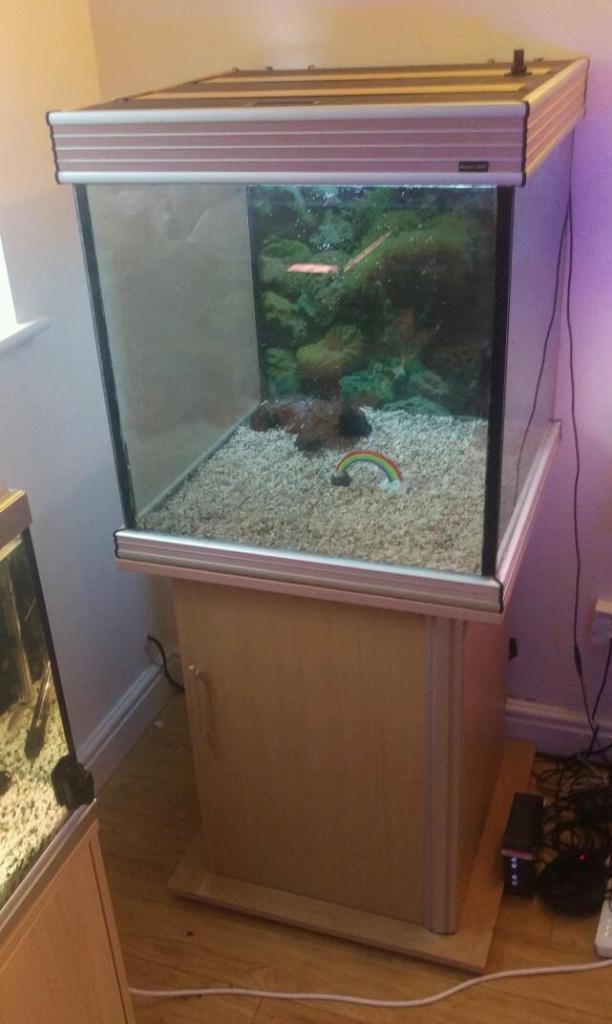 Fish tanks for sale 200l aquarium fish tank 200l for for Tropical fish tanks for sale