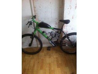 80cc petrol bike