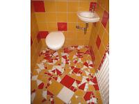 villeroy boch wandfliese fliese bad wc in bayern. Black Bedroom Furniture Sets. Home Design Ideas