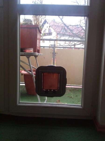 Fenster mit integrierter katzenklappe in th ringen for Fenster mit katzenklappe