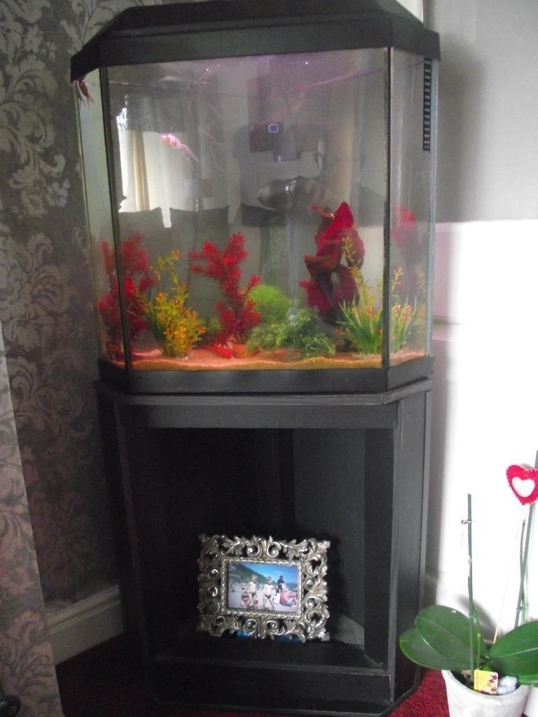 Corner unit fish tank with stand united kingdom gumtree for Corner fish tank for sale
