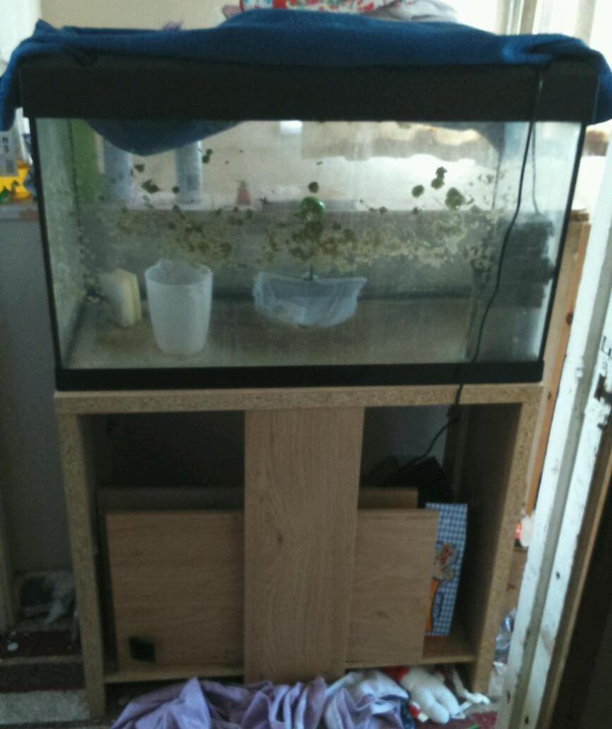 Aquarium for sale west midlands fish tanks equipment 2 for Fish tank equipment