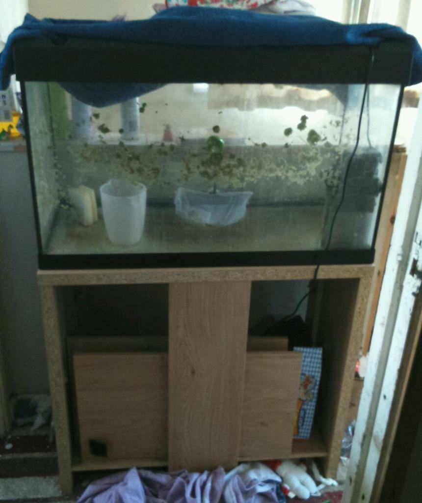 Fish tank 125l quick sale hence price united kingdom for Fish tank price