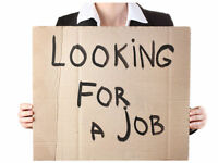 Professional CV Writing Service   Creative Writing