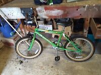 Apollo Groundhog Bike