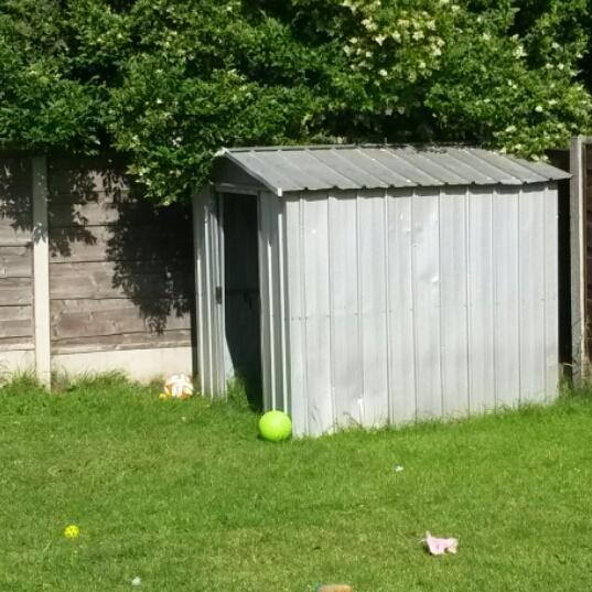 Metal shed for sale manchester gumtree