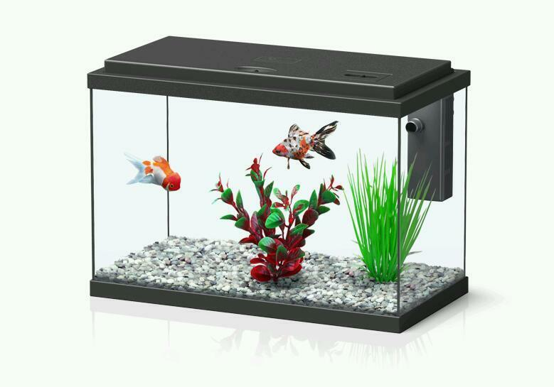 Starter Fish Tank For Sale Brand New United Kingdom