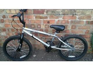 Terrigo bmx bike
