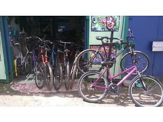 mountain bikes ( cheap and cheerful ) ladies/gents