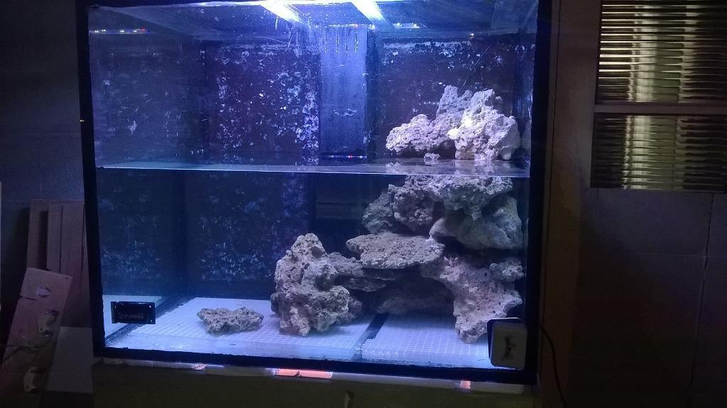 Custom built marine fish tank united kingdom gumtree for Unique fish tanks for sale