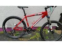 Specialized Hardrock custom mountain bike