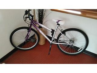 Girls Bike - Would Suit a Teenager or Short Woman