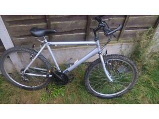 Raliegh Mens Mountain Bike