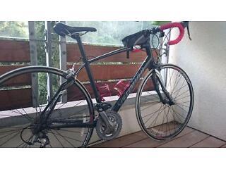 Female Specialized Dolce 57cm Road Bike