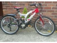 Rhino boys Mountain bike