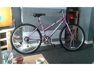 Ladies sabre genie bike . 26 inch wheels.