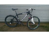 Specialized Rockhopper Mountain Bike - Large Frame