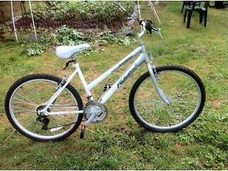 Ladies/Teenagers Falcon Mountain Bike