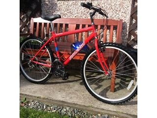 GENTS 15 SPEEDRALEIGH MOUNTAIN BIKE HARDLY USEDWITH HELMET ONLY £40