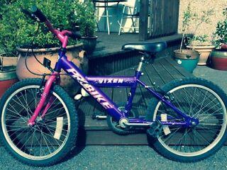 """Little Girls Vixen Pro Bike 20"""" wheels"""