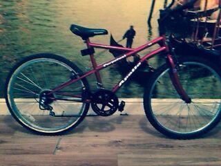 Great Apollo mountain bike