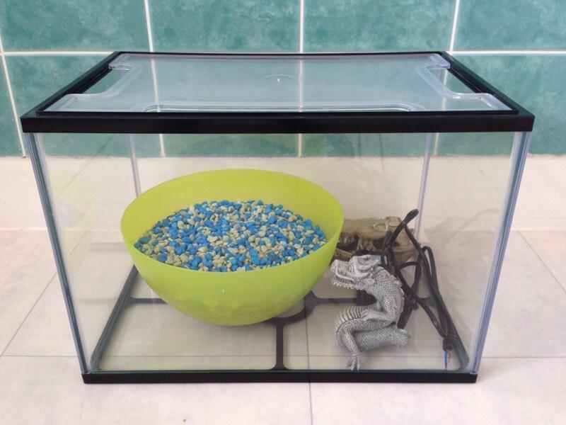 24 Litre Starter Fish Tank United Kingdom Gumtree
