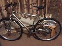 Mens hybrid mountain type bicycle bike