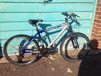 Barracuda alloy frame mountain bike
