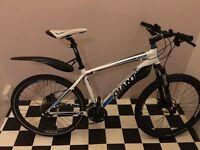 Giant XTC adult bike