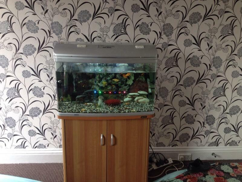 Fish tanks for sale west yorkshire aqua one 165 litre for Fish tanks for sale cheap