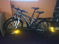 Adults bikes for sale £60 each