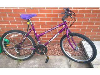 girls 17 inch bike....needs attention