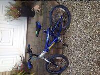 """Blue bike 14"""""""
