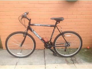 GENTS PROBIKE MOUNTAIN BIKE 260