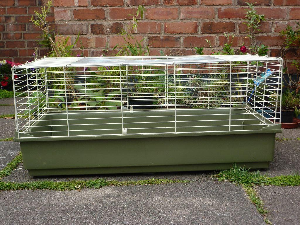 Contact this advertiser for Small guinea pig cages for sale