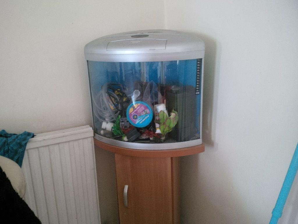 Corner fish tank with all buy sale and trade ads for Aquarium corner decoration