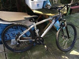 Saracen Elements 3 - Mountain Bike - Working condition - SAS/Price Negotiable