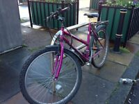 Purple Bicycle for sale!