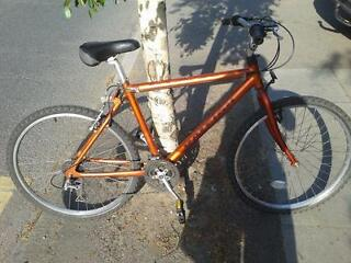 Bicycle (adult size)