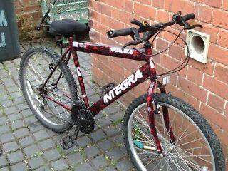 Taurus Intergra Bike