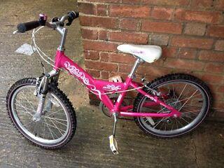 raleigh diva girls bike