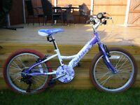 Probike Melody 20in Girl Kids Bike