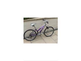 Girls lady's bike