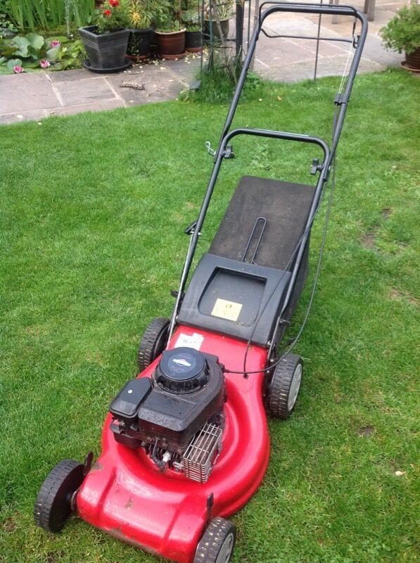 Small rotary mower