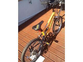 Kids Apollo stomp mountain bike