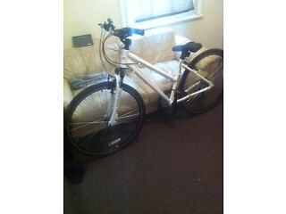 "a brand new lady mountain bike 21gears 17"" frame"