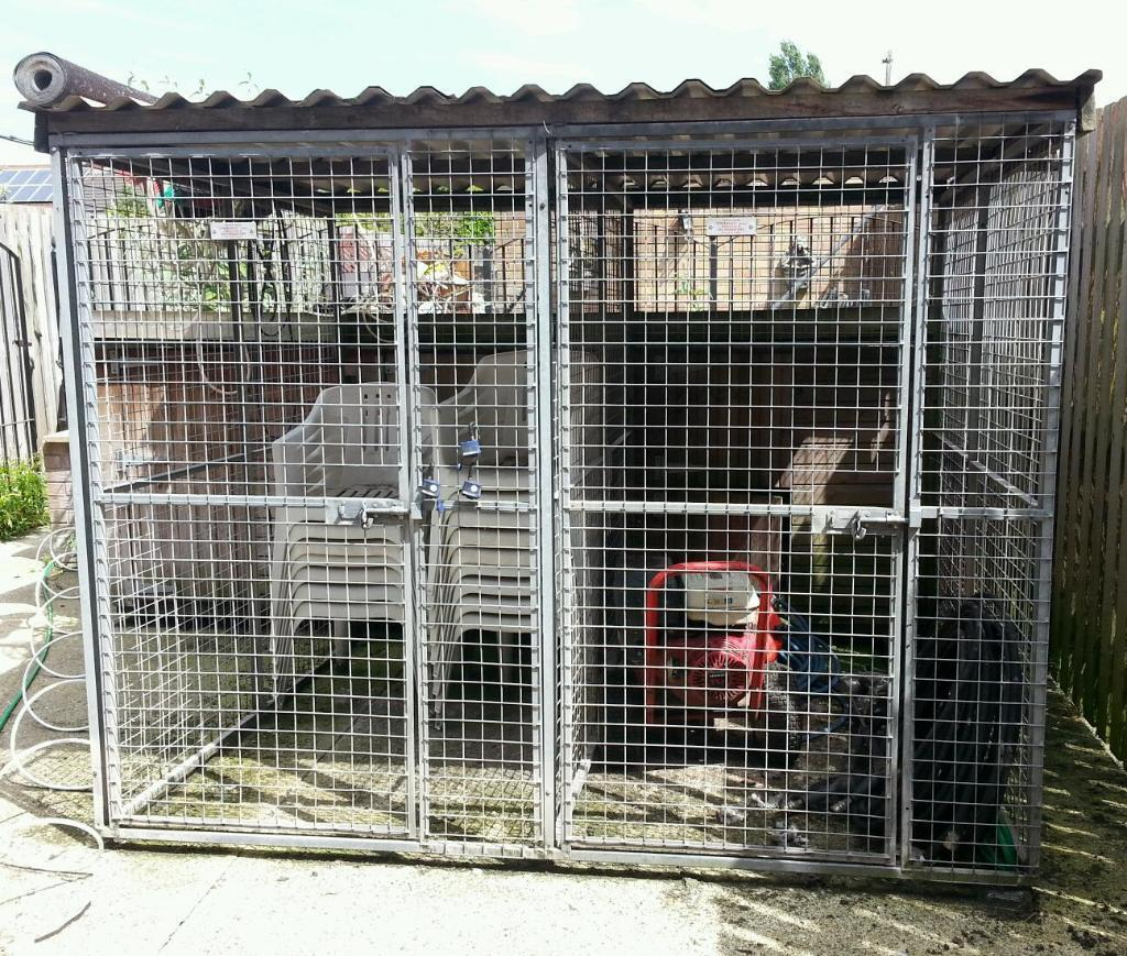 Dog Kennels For Sale Gumtree