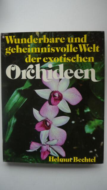 Wunderbare und geheimnisvolle Welt der exotischen Orchideen - Helmut Bechtel