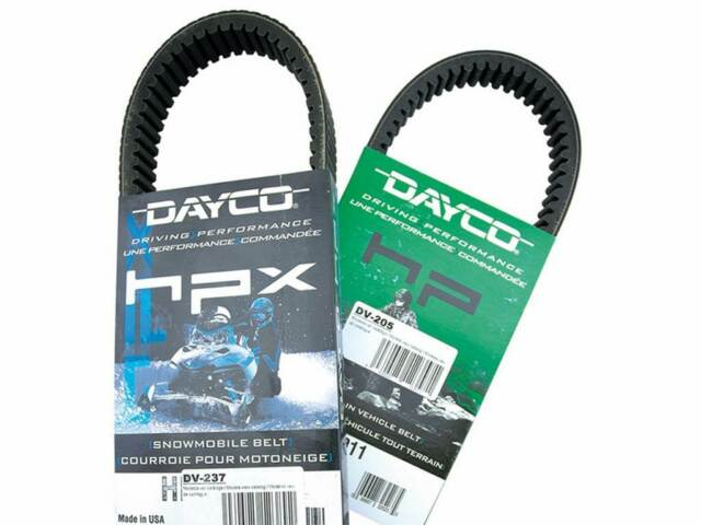 DAYCO Belt drive transmission DAYCO  PIAGGIO FREE 100 (2002-2006)