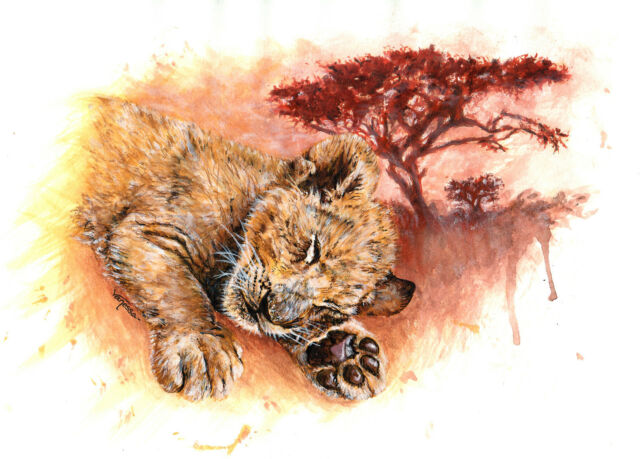 Limited Edition A4 Signed Print Baby Lion Cub Cat Realism Animals Painting Art